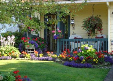 perennial-front-yard-garden